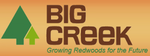Big Creek Lumber Logo